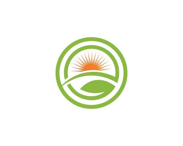 Modello di progettazione dell'illustrazione dell'icona di vettore di verde di foglia dell'albero