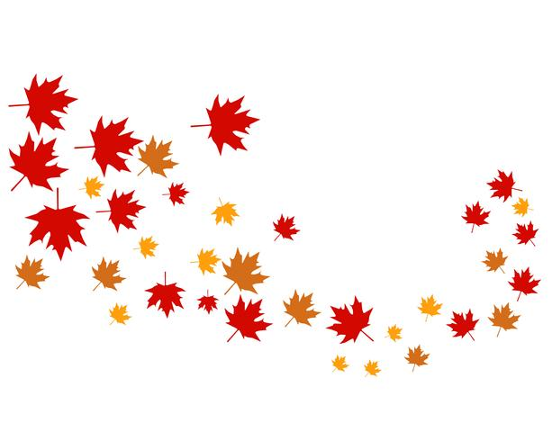 Érable feuilles logo et symbole vecteur