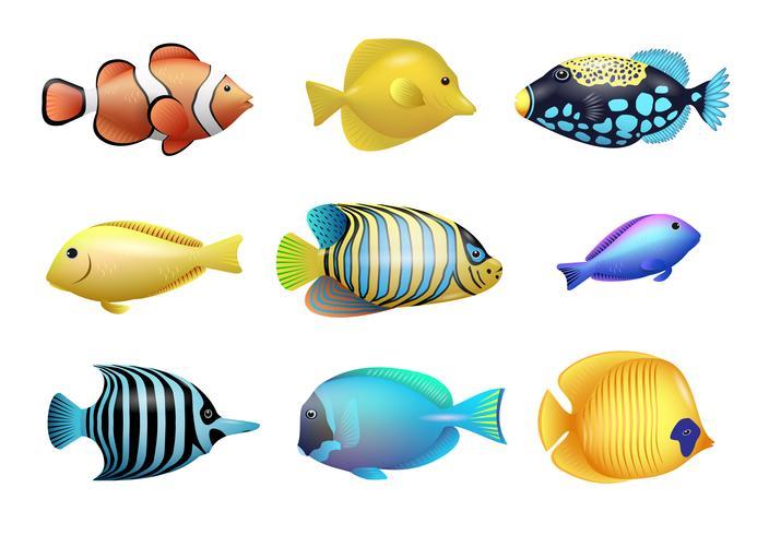 Ställ av ritningar av ljusa exotiska tropiska fiskar