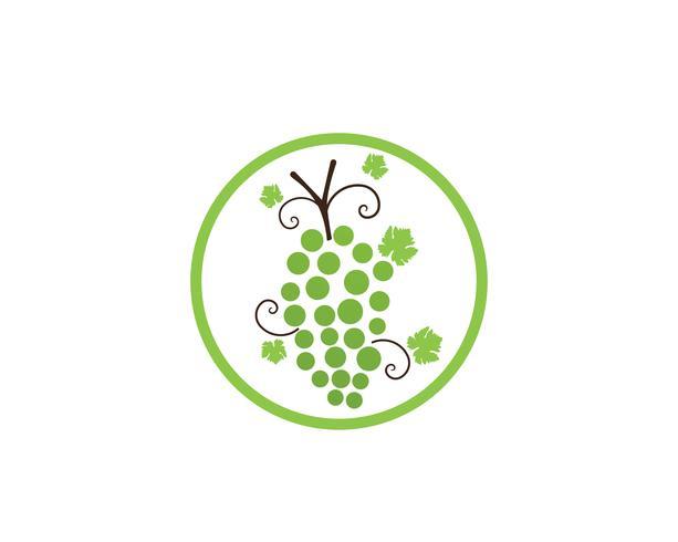 illustration vectorielle violet raisin et vert