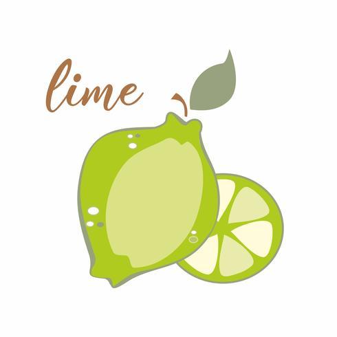 Fruta lima. Inscripción. Banner publicitario. Ilustracion vectorial vector