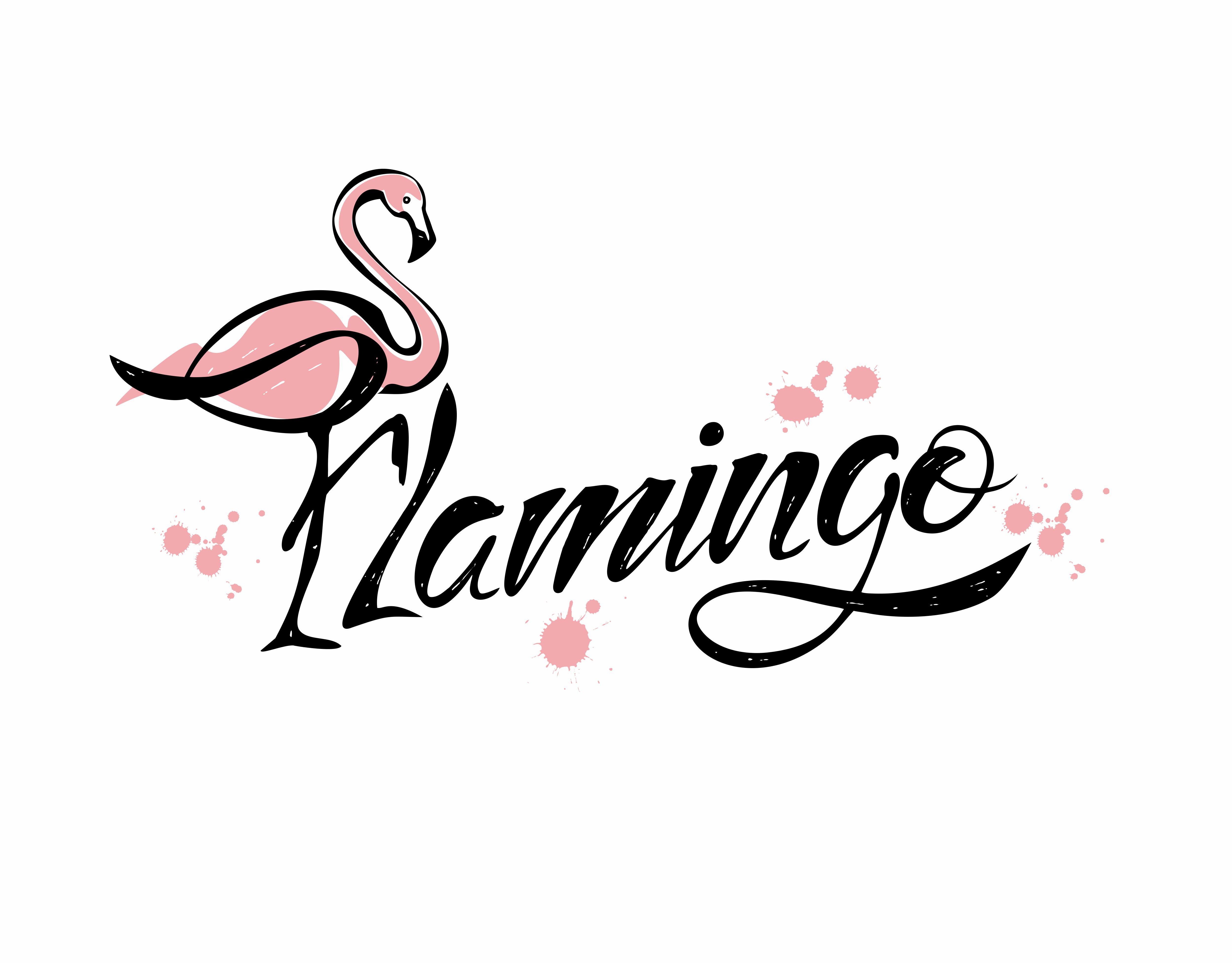 Flamingo Lettering Stylish Inscription Blots Vector