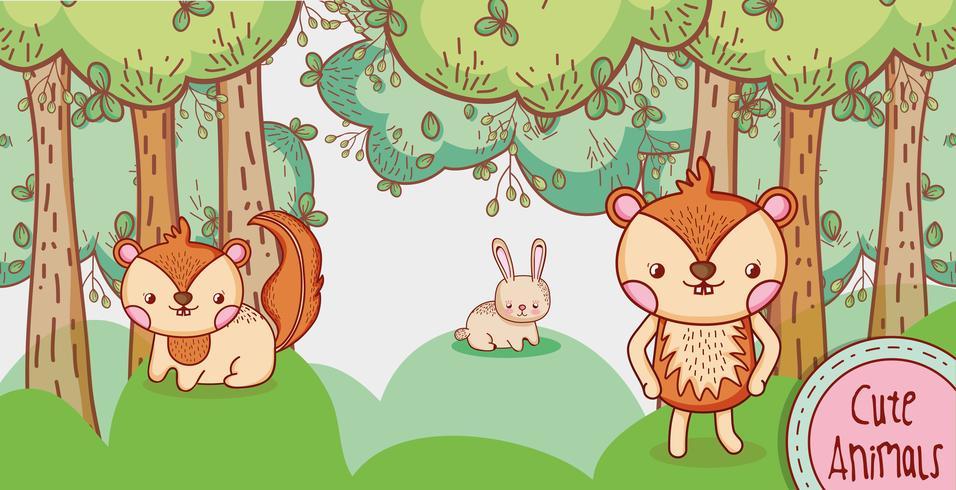 Leuke dieren in het bos