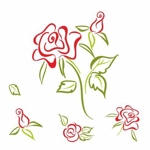 Rosa. flor. elementos. conjunto. Para la decoración de tarjetas. Dibujo lineal. Vector. vector