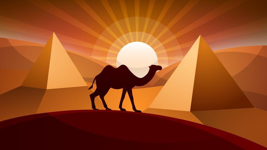 Landscape desert - camel illustration. vector