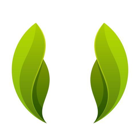 Grünes Blatt, Logo mit zwei Blättern, Ikone.
