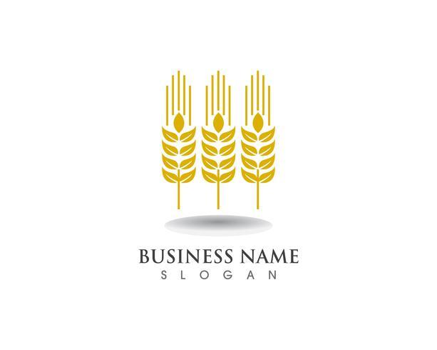 tarwe Logo en symbool Sjabloon vector pictogram ontwerp