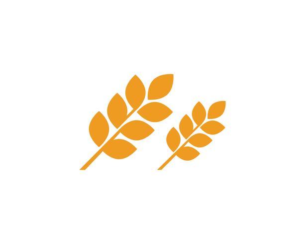 Agricoltura grano loghi