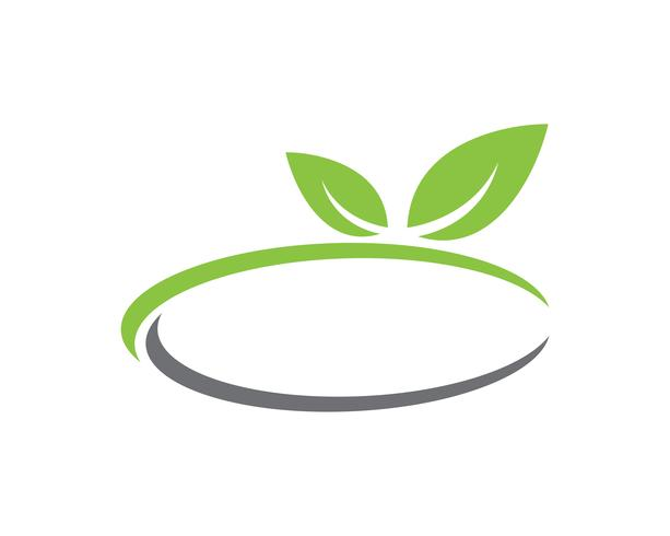 grünes Blatt Ökologie Natur Element Vektor
