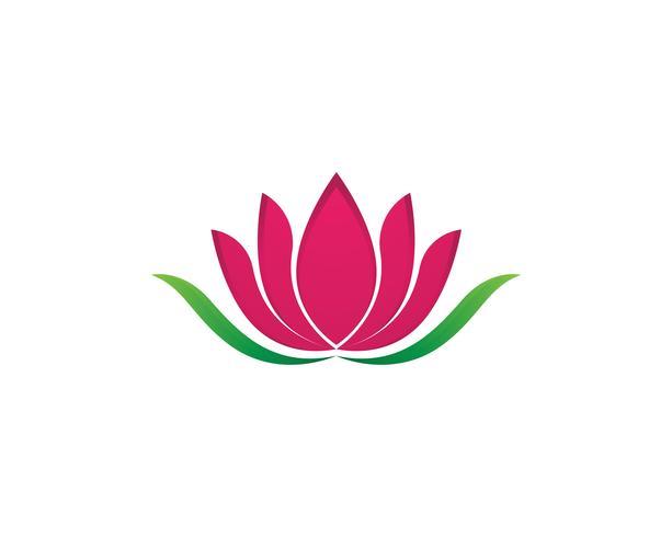Ejemplo del diseño de las flores del icono del loto de la belleza