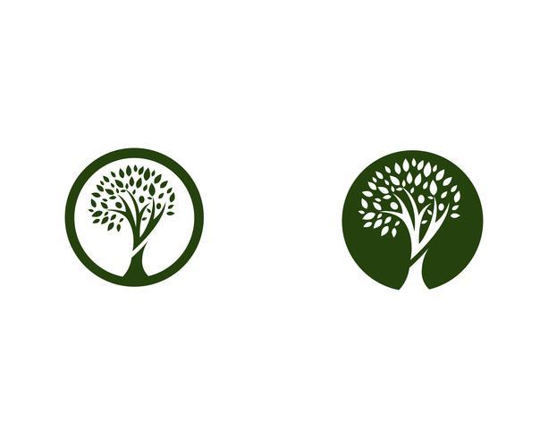 vector de plantilla de logotipo de árbol genealógico