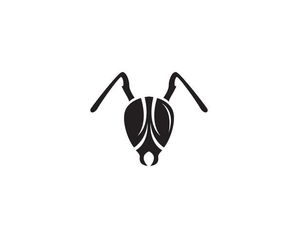 Illustrazione di vettore del modello di logo di formica