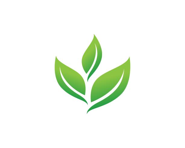 https://static.vecteezy.com/system/resources/previews/000/626/625/non_2x/green-leaf-logo-vector.jpg