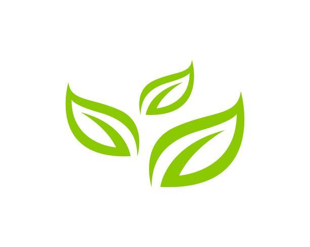 Loghi di verde foglia ecologia natura elemento vettoriale