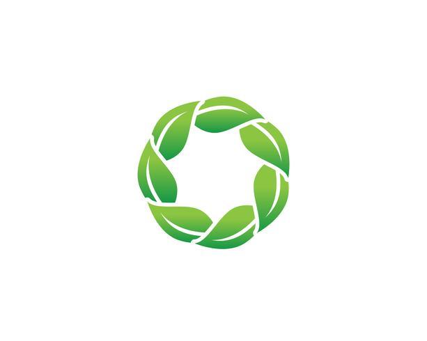 Grön bladlogo vektor