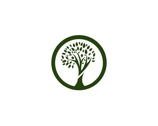 släktträd logotyp mall vektor