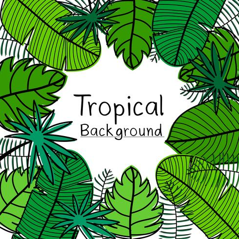 Fond de feuilles tropicales dessinées à la main. vecteur