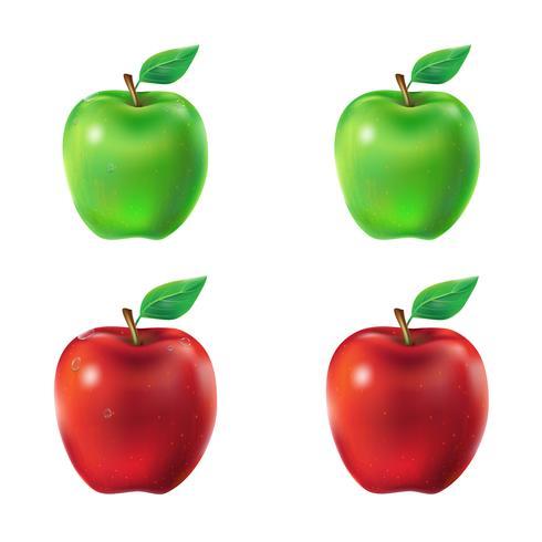 Insieme delle mele verdi e rosse dell'illustrazione di vettore