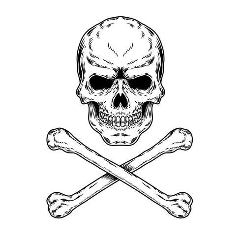 Illustrazione vettoriale di un teschio e ossa incrociate