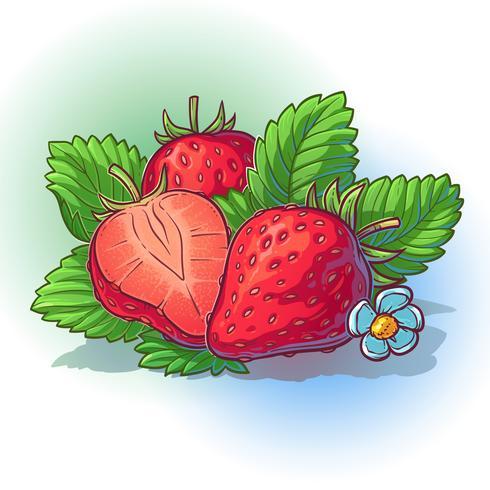 Illustrazione vettoriale di una fragola con foglie