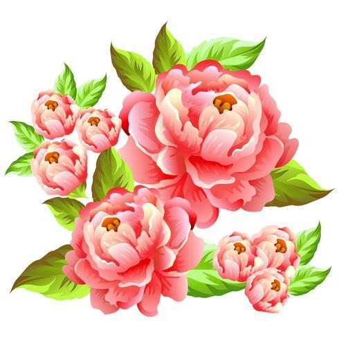 camelia bloem illustratie