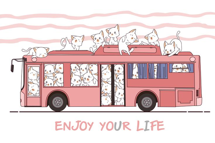 Kawaii chats et bus