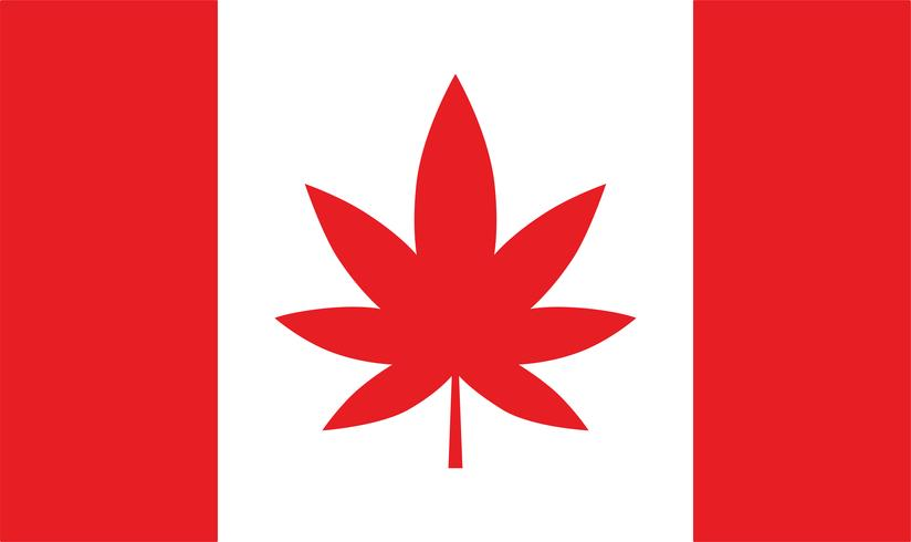 Bandiera del Canada con foglia di maijuana.