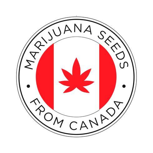 Marijuana frön från Kanada ikonen.