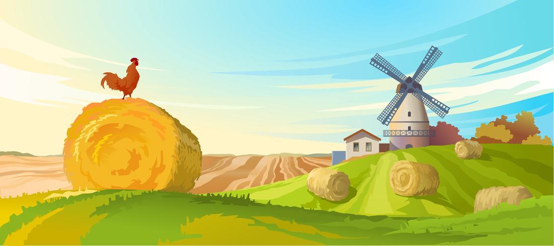 Paysage d'été rural d'illustration vectorielle