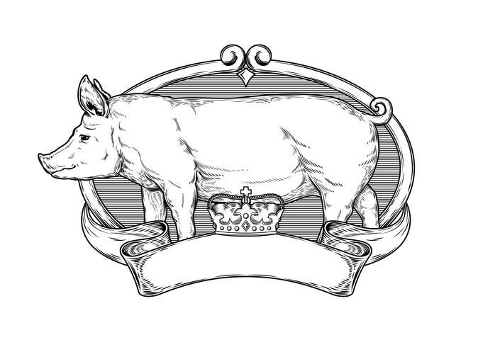 Vektor illustration av en gris