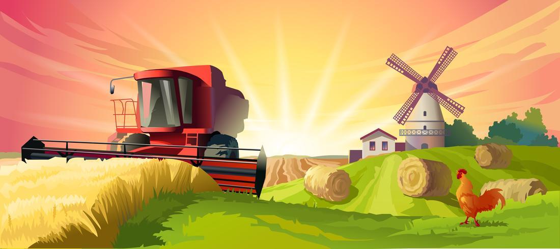 Illustrazione vettoriale paesaggio rurale estivo