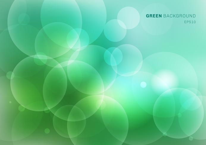 A natureza verde abstrata borrou o fundo bonito com luzes do bokeh. Desfoque de luz natural cenário. vetor