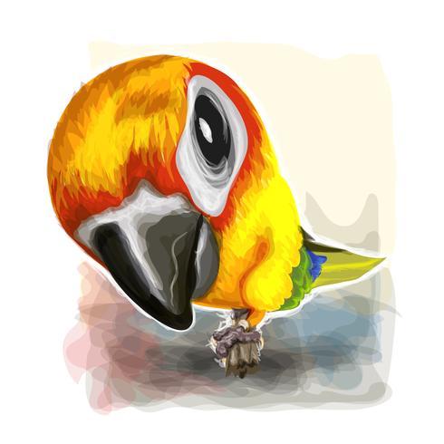 Aguarela do papagaio na arte gráfica de vetor.