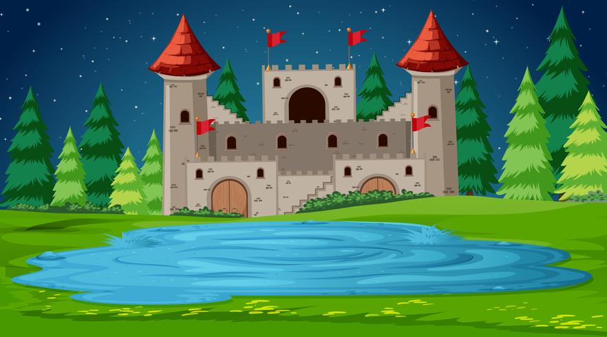 Castle scene at night