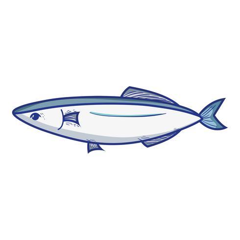 delizioso pesce di mare con nutrizione naturale