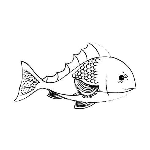 Figura pescado delicioso marisco con nutrición natural.