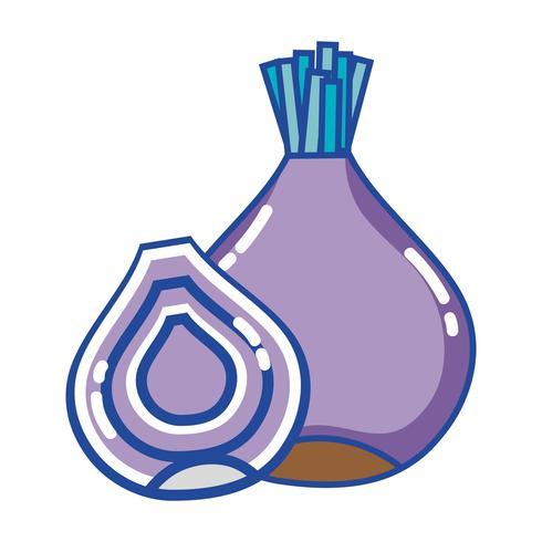 organic onion nutrition vegetable taste vector