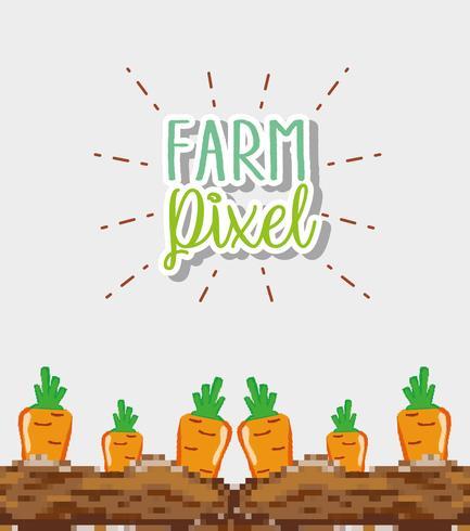 Dibujos animados de píxeles de granja