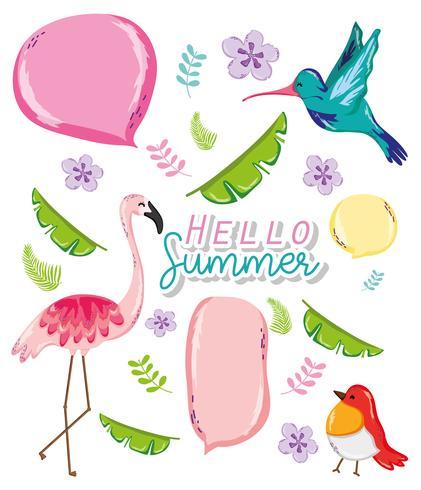 Hola tarjeta de verano