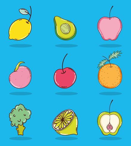 Set di raccolta di frutta