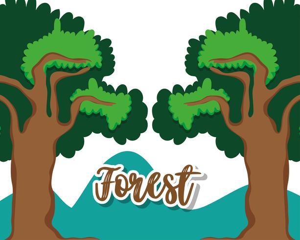 Hermoso paisaje del bosque