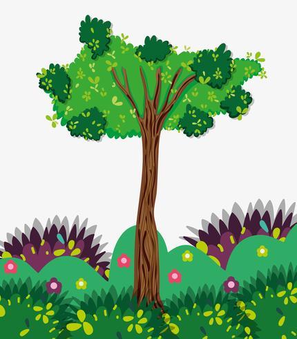 Albero nella foresta