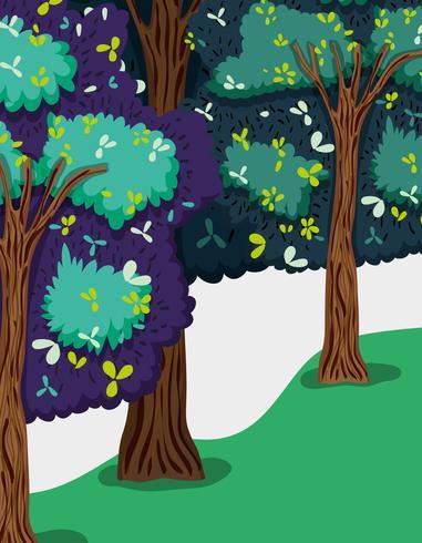 Splendido scenario della foresta