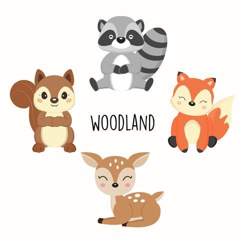 Lindos animales del bosque. Zorros, mapaches, dibujos animados de ardillas. vector