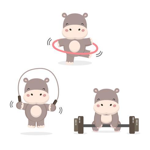Hipopótamos engraçados fazendo exercício.