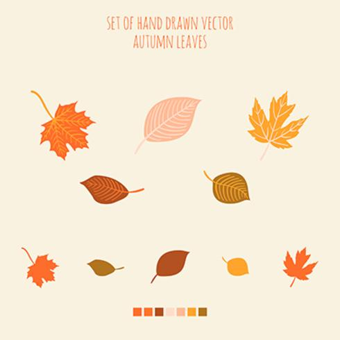 Set of vector hand drawn leaves with palette