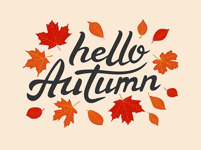 Hallo herfst vector hand getrokken belettering met bladeren