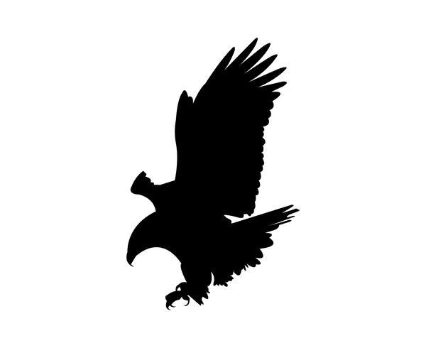 silhueta de voar de águia
