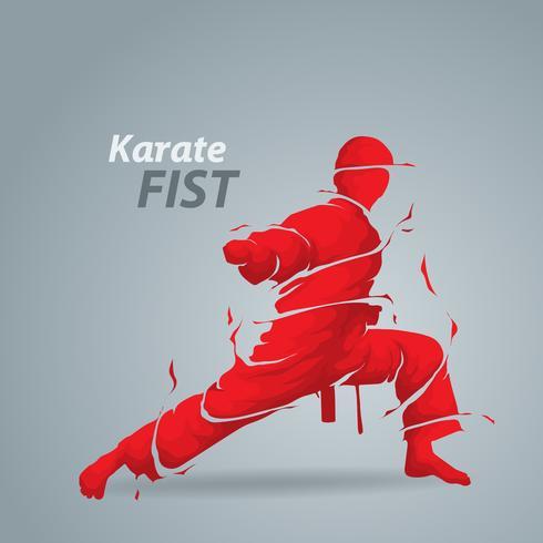 silueta de karate puño splash