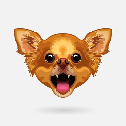 chihuahua dog head vector
